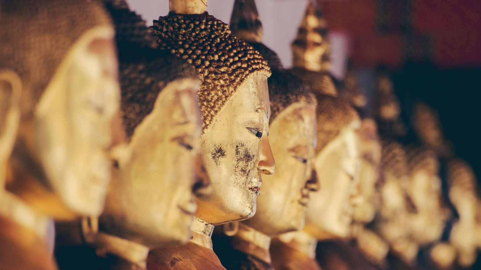 Thailand golden buddhas